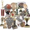 Click this Image to visit the All Award Trophies category.